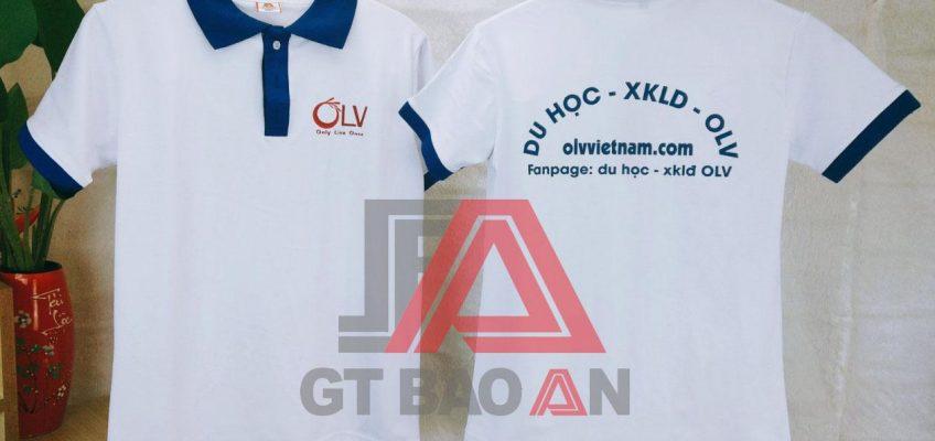 Áo thun đồng phục học sinh trường OLV